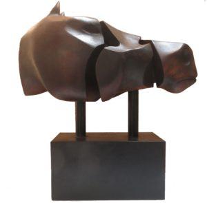 Equine Head 3jpg
